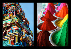 Colors of South India